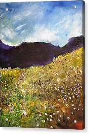 High Field Of Flowers Acrylic Print by Gary Smith