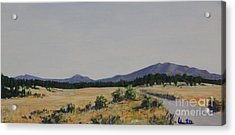 High Land Road Acrylic Print by Adam Smith