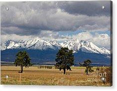 Acrylic Print featuring the photograph High Tatras - Vysoke Tatry by Les Palenik