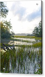 Acrylic Print featuring the photograph High Tide by Margaret Palmer