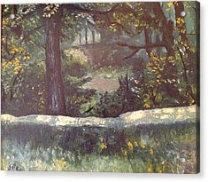 Highland Park 1 Acrylic Print by Victor SOTO