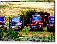 Hill Billy Used Auto Sales Acrylic Print by Andrea Camp