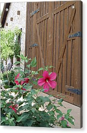 Acrylic Print featuring the photograph Hill Country Hibiscus by Elizabeth Sullivan