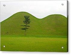 Hill Tombs And Tree Korea Acrylic Print by Gabor Pozsgai