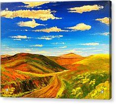Hill View Valley Acrylic Print by Nelson