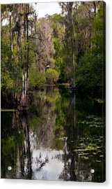 Hillsborough River In March Acrylic Print by Steven Sparks