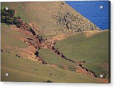 Hillside Erosion Caused By Run Acrylic Print by Jason Edwards