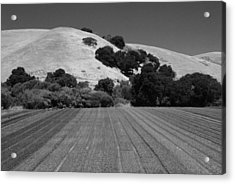 Acrylic Print featuring the photograph Hillside Farmland by Kathleen Grace