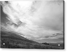 Acrylic Print featuring the photograph Hillside Meets Sky by Kathleen Grace