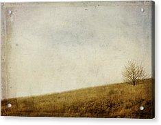 Hillside Acrylic Print