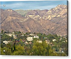 Hilly Residential Area Acrylic Print by David Buffington