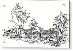 Acrylic Print featuring the drawing Hilo House by Andrew Drozdowicz