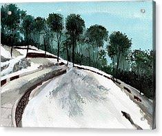 Himalaya 2 Acrylic Print by Anil Nene