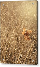 Hold Me Tenderly Acrylic Print by Laurie Search