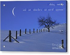 Holiday Greetings Acrylic Print by Sabine Jacobs