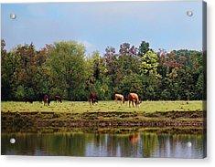 Home On The Range Acrylic Print by Susan Bordelon