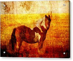 Home Series - Strength And Grace Acrylic Print by Brett Pfister
