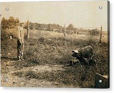 Homer Hunt Tending Pigs, Rockcastle Acrylic Print by Everett