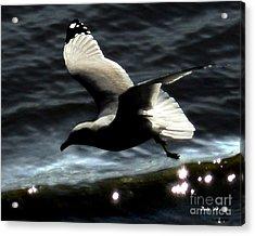 Acrylic Print featuring the digital art Homeward by Dale   Ford
