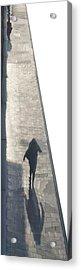 Hommage To Leon Spillaert Acrylic Print by Jonathan Eden-Drummond