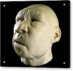 Homo Heidelbergensis Reconstruction Acrylic Print by Javier Truebamsf