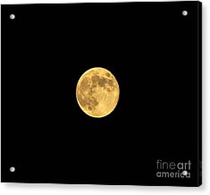 Honey Moon Acrylic Print
