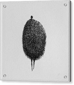 Honey Acrylic Print by Valdas Misevicius