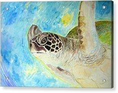 Honu Swimming Acrylic Print by Tamara Tavernier