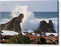 Hookipa Beach Wave 1 Acrylic Print by Teresa Zieba