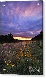 Hoosier Sunset - D007743 Acrylic Print by Daniel Dempster