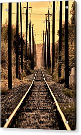 Hop On Acrylic Print by Scott Holmes