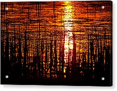 Horicon Marsh Sunset Wisconsin Acrylic Print by Steve Gadomski