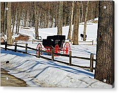 Horse And Buggy - No Work Today Acrylic Print by Janice Adomeit