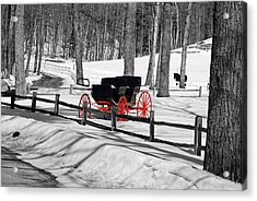 Horse And Buggy - No Work Today No. 2 Acrylic Print by Janice Adomeit