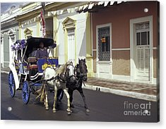 Horse And Carriage Granada Nicaragua Acrylic Print by John  Mitchell