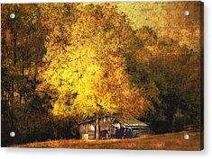 Horse Barn In The Shade Acrylic Print by Kathy Jennings