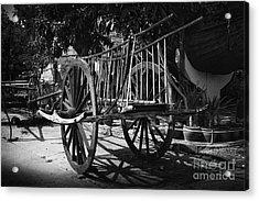 Horse Cart Acrylic Print by Thanh Tran
