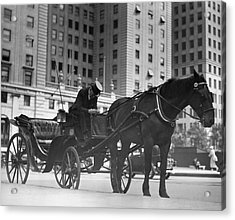 Horse Drawn Carriage, Nyc Acrylic Print by George Marks
