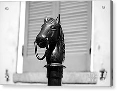 Horse Head Hitching Post Macro French Quarter New Orleans Black And White  Acrylic Print by Shawn O'Brien