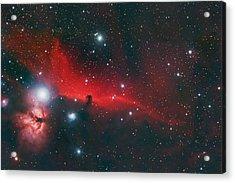 Horse Head Nebula B33 Acrylic Print