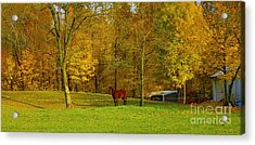 Horse In Autumn Acrylic Print by Kathleen Struckle
