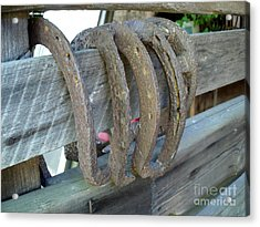 Horse Shoes Acrylic Print