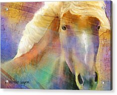 Horse With The Golden Mane Acrylic Print by Arline Wagner