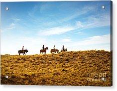 Horseback Riding Acrylic Print by Carlos Caetano