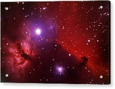 Horsehead Nebula In The Belt Of Orion Acrylic Print by A. V. Ley
