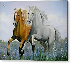 Horses And Bluebonnets Acrylic Print by Kay Mashburn
