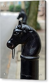 Horses On Delancey Street Acrylic Print by Lisa Phillips
