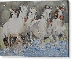 Horses Thru Water Acrylic Print