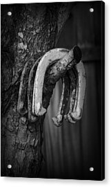 Acrylic Print featuring the photograph Horseshoes by Kelly Hazel
