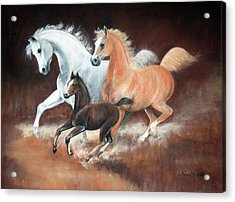 Horsin' Around Acrylic Print by Rose McIlrath